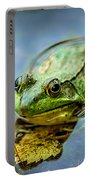 American Bull Frog Portable Battery Charger