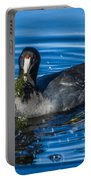 American Coot Portable Battery Charger
