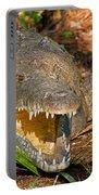 American Crocodile Portable Battery Charger