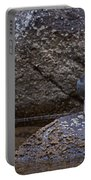 American Dipper   #2488 Portable Battery Charger