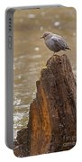 American Dipper   #7879 Portable Battery Charger