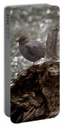 American Dipper   #7944 Portable Battery Charger