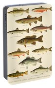 American Game Fish Portable Battery Charger