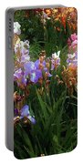 American Giverny Portable Battery Charger