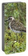 American Golden Plover Portable Battery Charger