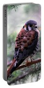 American Kestral Portable Battery Charger