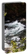 American River's Levels Portable Battery Charger