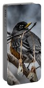 American Robin 2 Portable Battery Charger