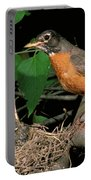 American Robin Feeding Its Young Portable Battery Charger