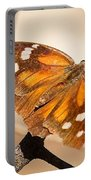 American Snout Butterfly Portable Battery Charger