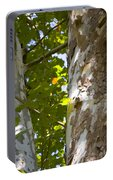 American Sycamore Portable Battery Charger