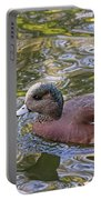 American Wigeon Portable Battery Charger