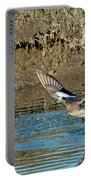American Wigeon Pair Taking Portable Battery Charger