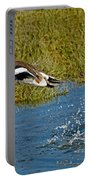 American Wigeon Taking Off Portable Battery Charger