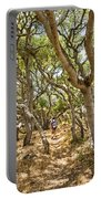 Among The Trees - The Mysterious Trees Of The Los Osos Oak Reserve Portable Battery Charger