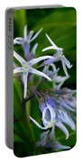 Amsonia Blue Stars Portable Battery Charger