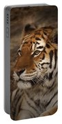 Amur Tiger 2 Portable Battery Charger