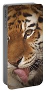 Amur Tiger 5 Portable Battery Charger