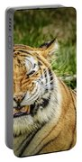 Amur Tiger Smile Portable Battery Charger