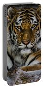 Amur Tiger Watching You Portable Battery Charger