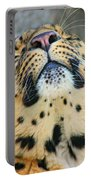 Amure Leopard Portable Battery Charger