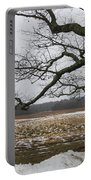 An Appleton Tree And Field In Winter Portable Battery Charger