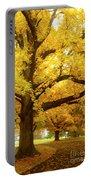 An Autumn Walk - 2 Portable Battery Charger