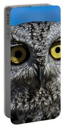 An Owl Portable Battery Charger