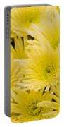 Anastasia Sunny Portable Battery Charger
