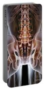 Anatomy Of The Hip Bones Portable Battery Charger