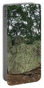 Ancient Boulders Portable Battery Charger