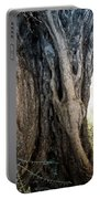 Ancient Old Fine Olive Tree 6 Mountain Spain  Portable Battery Charger