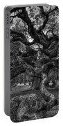 Angel Oak Tree 2 Portable Battery Charger