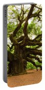 Angel Oak Tree 2009 Portable Battery Charger by Louis Dallara