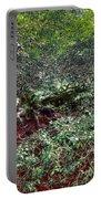 Angel Oak Tree 3 Portable Battery Charger