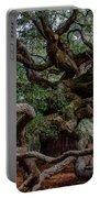 Angel Oak Tree Treasure Portable Battery Charger