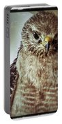 Angry Hawk Portable Battery Charger