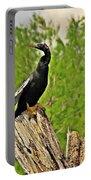 Anhinga Bird On Stump Portable Battery Charger