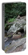 Anna Ruby Falls 16 Portable Battery Charger