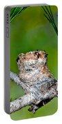 Annas Hummingbird Nest Portable Battery Charger