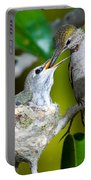 Annas Hummingbirds At Nest Portable Battery Charger