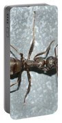 Ant Portable Battery Charger