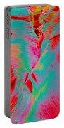 Antelope Canyon Abstract Portable Battery Charger