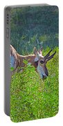 Antelope Near Wildlife Loop Road In Custer State Park-south Dakota- Portable Battery Charger