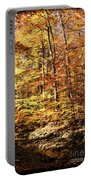 Antique Fall Portable Battery Charger