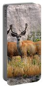 Antler To Antler Portable Battery Charger