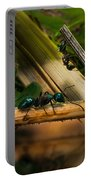 Ants Adventure 2 Portable Battery Charger