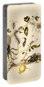 Ants Spiders Tarantula And Hummingbird Portable Battery Charger