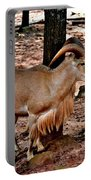 Aoudad Plus 2 Portable Battery Charger