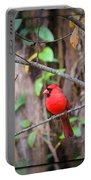 Appalachian Cardinal Portable Battery Charger
